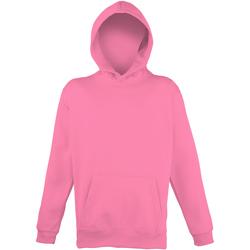 Textiel Kinderen Sweaters / Sweatshirts Awdis JH04J Elektrisch Roze