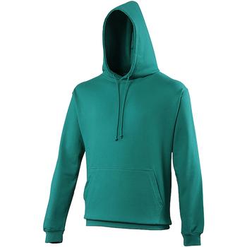 Textiel Sweaters / Sweatshirts Awdis College Jade