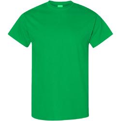 Textiel Heren T-shirts korte mouwen Gildan Heavy Iers Groen