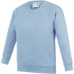 Textiel Kinderen Sweaters / Sweatshirts Awdis Academy Sky