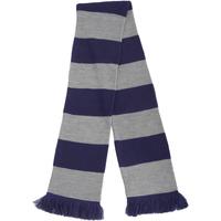 Accessoires Sjaals Floso Knitted Blauw/zilver