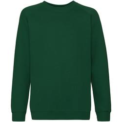 Textiel Kinderen Sweaters / Sweatshirts Fruit Of The Loom Raglan Bottle Groen