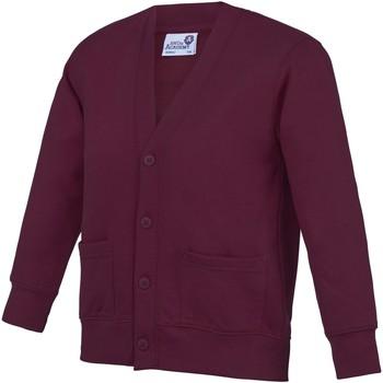 Textiel Kinderen Vesten / Cardigans Awdis Academy Claret