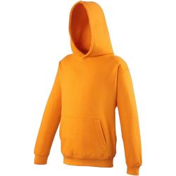 Textiel Kinderen Sweaters / Sweatshirts Awdis Hooded Sinaasappelschilfers