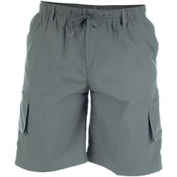 Textiel Heren Korte broeken / Bermuda's Duke Cargo Grijs
