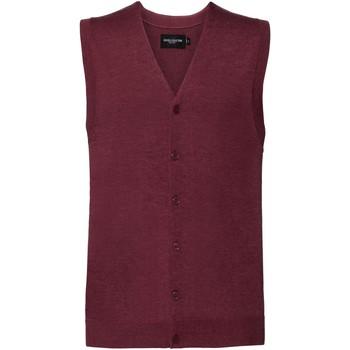 Textiel Heren Vesten / Cardigans Russell Knitted Veenbessen mergel