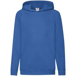Textiel Kinderen Sweaters / Sweatshirts Fruit Of The Loom Hooded Royaal Blauw