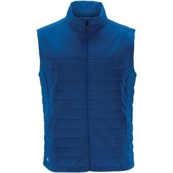 Textiel Heren Vesten / Cardigans Stormtech Quilted Azuurblauw