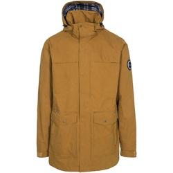 Textiel Heren Parka jassen Trespass Rowland Bruin