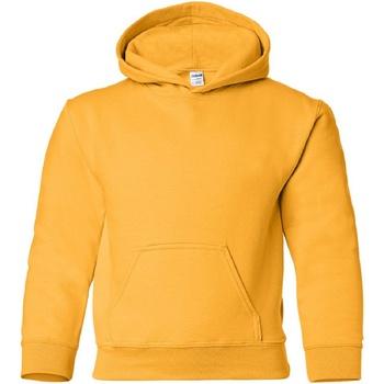 Textiel Kinderen Sweaters / Sweatshirts Gildan Hooded Goud