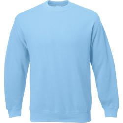 Textiel Heren Sweaters / Sweatshirts Universal Textiles Jersey Lichtblauw