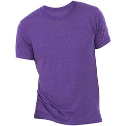 Textiel Heren T-shirts korte mouwen Bella + Canvas Triblend Paarse Triblend