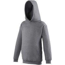 Textiel Kinderen Sweaters / Sweatshirts Awdis Hooded Houtskool