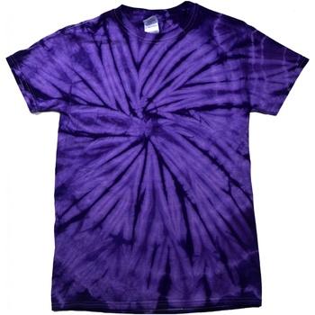 Textiel T-shirts korte mouwen Colortone Tonal Spin Paars
