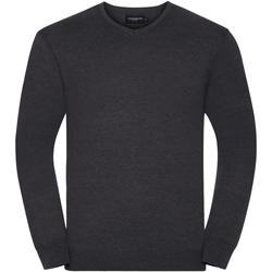 Textiel Heren Truien Russell Pullover Houtskool mergel