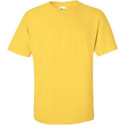 Textiel Heren T-shirts korte mouwen Gildan Ultra Daisy