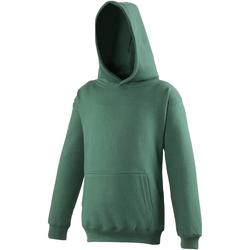 Textiel Kinderen Sweaters / Sweatshirts Awdis Hooded Fles groen