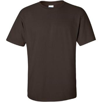Textiel Heren T-shirts korte mouwen Gildan Ultra Donkere chocolade