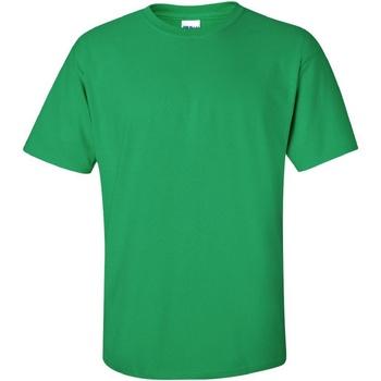 Textiel Heren T-shirts korte mouwen Gildan Ultra Iers Groen