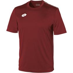Textiel Kinderen T-shirts korte mouwen Lotto LT26B Granata/Wit