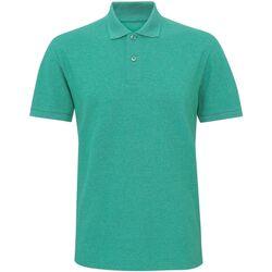 Textiel Heren Polo's korte mouwen Asquith & Fox Twisted Groene Melange