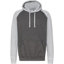 Textiel Heren Sweaters / Sweatshirts Awdis Hooded Houtskool/Heather Grey