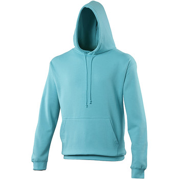 Textiel Sweaters / Sweatshirts Awdis College Hemelsblauw