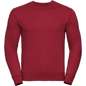 Textiel Heren Sweaters / Sweatshirts Russell Authentic Klassiek rood