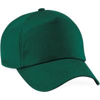 Accessoires Pet Beechfield Baseball Fles groen