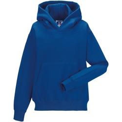 Textiel Kinderen Sweaters / Sweatshirts Jerzees Schoolgear Hooded Helder Koninklijk
