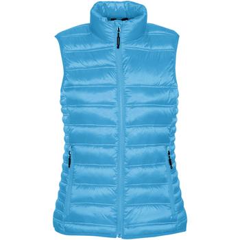Textiel Dames Dons gevoerde jassen Stormtech Quilted Elektrisch Blauw