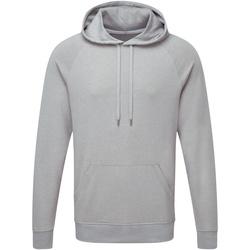 Textiel Heren Sweaters / Sweatshirts Russell Hooded Zilveren mergel