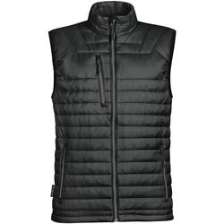 Textiel Heren Vesten / Cardigans Stormtech Thermal Zwart / Houtskool