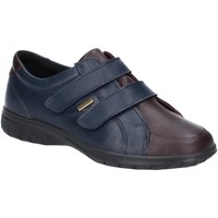 Schoenen Dames Lage sneakers Cotswold Haythrop Marine / Bruin