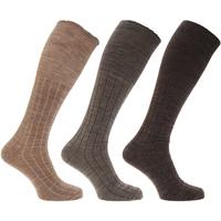 Accessoires Heren Sokken Universal Textiles  Bruin Assortiment