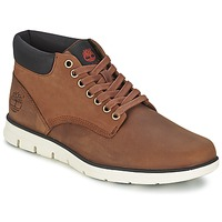 Schoenen Heren Hoge sneakers Timberland BRADSTREET CHUKKA LEATHER ROOD / Brown / Fg