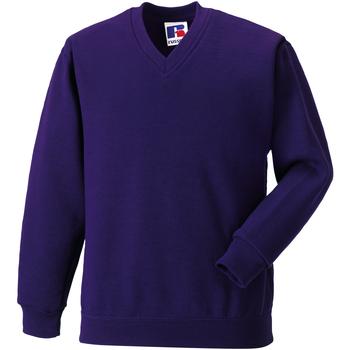Textiel Kinderen Sweaters / Sweatshirts Jerzees Schoolgear 272B Paars