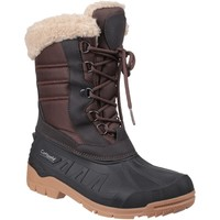 Schoenen Dames Snowboots Cotswold  Bruin