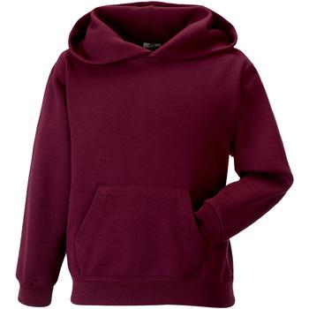 Textiel Kinderen Sweaters / Sweatshirts Jerzees Schoolgear Hooded Bourgondië