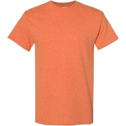 Textiel Heren T-shirts korte mouwen Gildan Heavy Zonsondergang