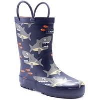 Schoenen Jongens Regenlaarzen Cotswold Puddle Haai