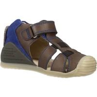 Schoenen Jongens Sandalen / Open schoenen Biomecanics 182147 Grijs