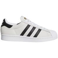 Schoenen Heren Skateschoenen adidas Originals Superstar adv Wit