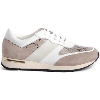 Schoenen Dames Lage sneakers Stephen Allen 10833-C11 Beige
