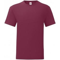 Textiel Heren T-shirts korte mouwen Fruit Of The Loom Iconic Bordeax