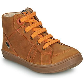 Schoenen Jongens Hoge sneakers GBB ANGELITO Brown