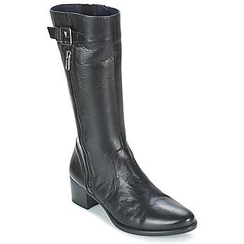 Schoenen Dames Laarzen Dorking LOLETA Zwart