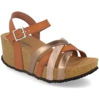 Schoenen Dames Sandalen / Open schoenen Silvian Heach M-160 Camel