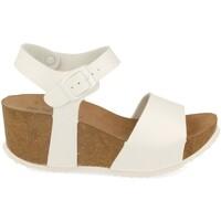 Schoenen Dames Sandalen / Open schoenen Silvian Heach M-77 Blanco
