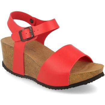 Schoenen Dames Sandalen / Open schoenen Silvian Heach M-77 Rojo